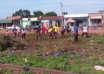 L'équipe de l'ONG COSED et quelques jeunes volontaires en pleine activité de salubrité à Bohicon